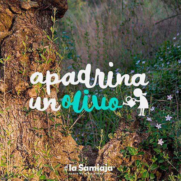tienda-apadrina-un-olivo-web-03